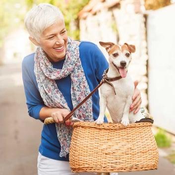 senior pet therapy