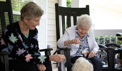senior living pet therapy