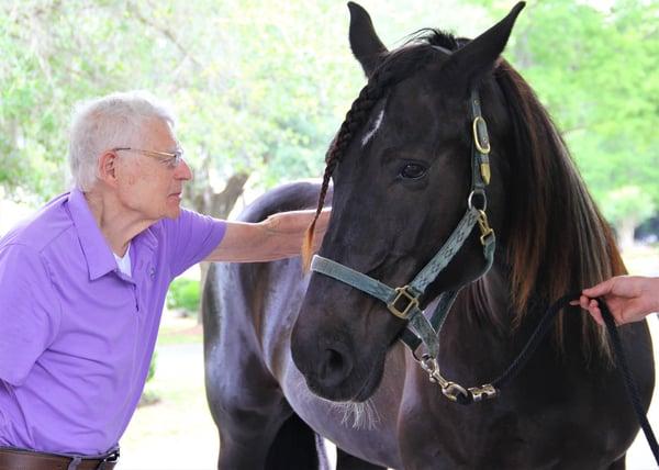 seniors and horses
