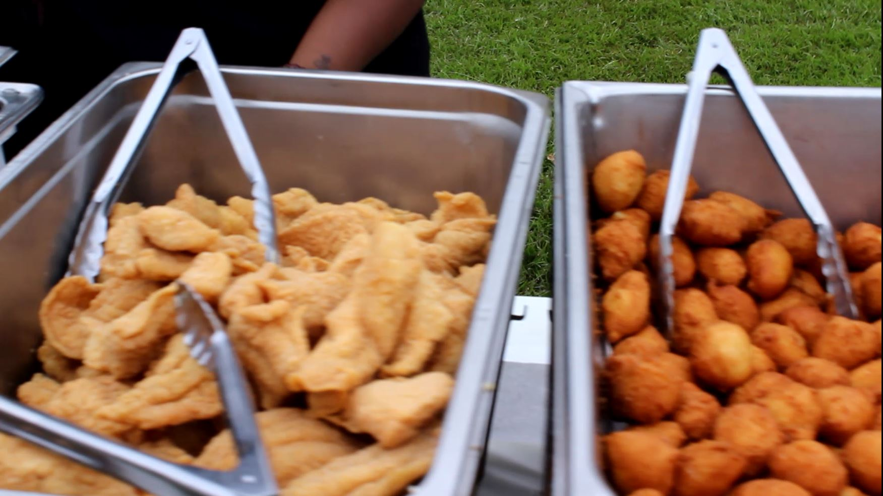 Moultrie Fish Fry (9001)
