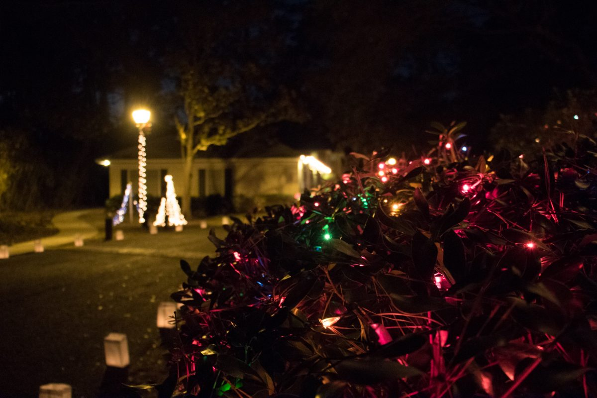 St Simons Island Light Night 2016