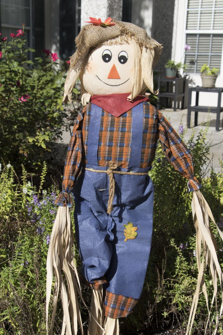 Scarecrow Alley